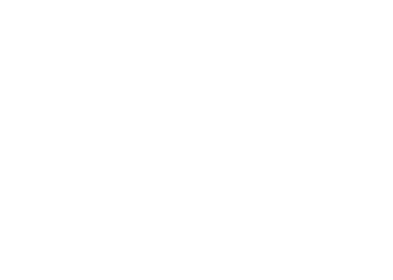 Developing future talent logo White